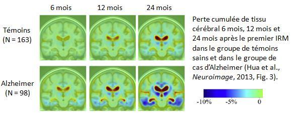 Extrait de Hua et al. 2013