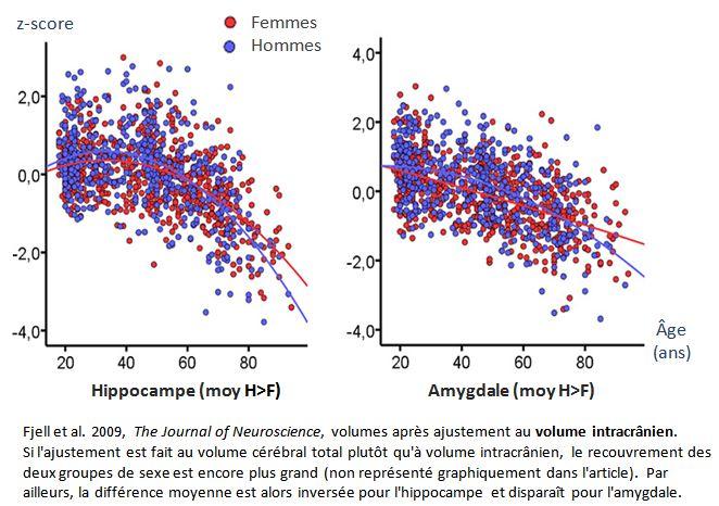 0_Hippocampe-Amygdale_Fjell 2009