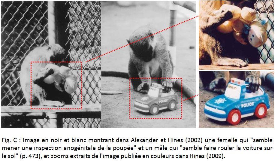 Le camion et la poupée   jeux de singes, jeux de vilains   Allodoxia f835ed7b71e6